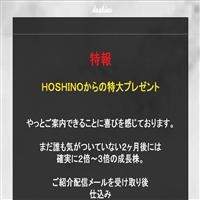 星野(HOSHINO)