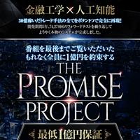 ザ・プロミスプロジェクト(THE PROMISE PROJECT)の口コミと評判